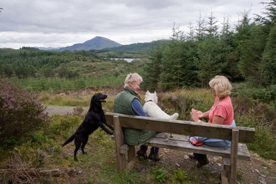 Two dog owners on the Forest Lakes Trail at Gwydir Forest Park