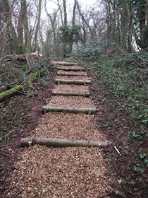 Penhow woodland steps