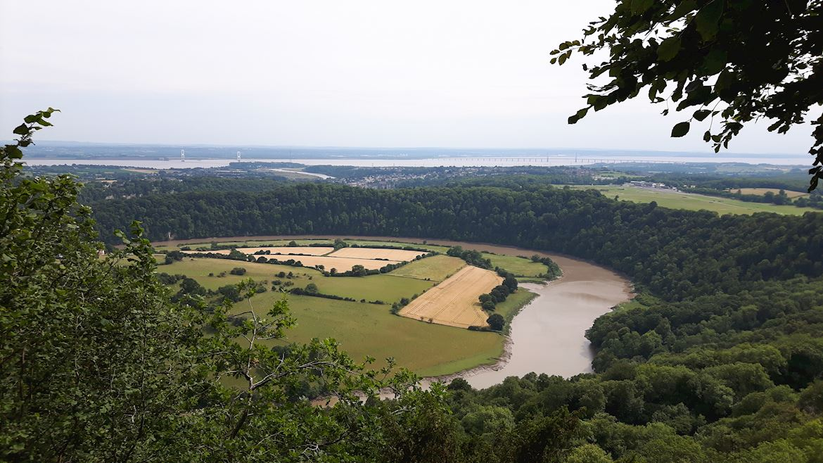 View of Wyndcliff Wood, near Chepstow